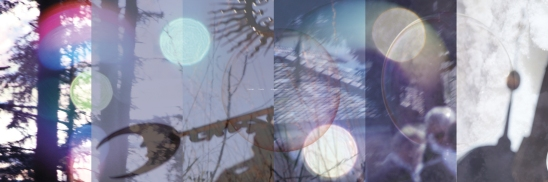 Träume I, Foto-Kombination 200 x 66 cm