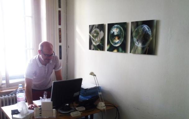 Seifenblasen Sukkulenten-Sammlung 3er Serie