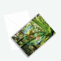 """Kunstkarte Edition 2016 aus Fotoprojekt Cornelia Aschmann """"Seifenblasen auf Reisen"""", Sujet 1"""
